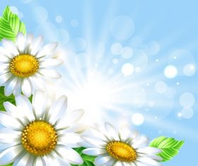 White flower with spring background art vector 04