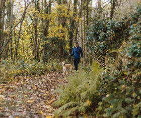 Woman and pet dog walking in the woods Stock Photo