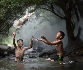 Children and ducks playing in the river Stock Photo