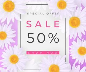 Chrysanthemum with sale background vector