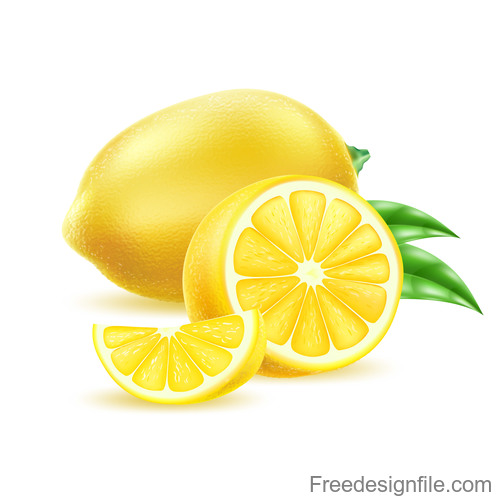 Fresh lemon vector illustration material