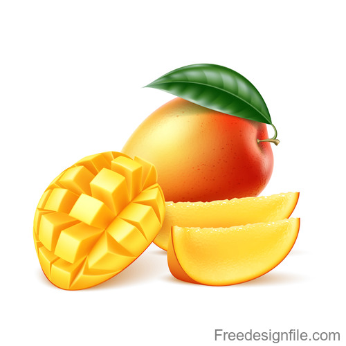 Fresh mango vector illustration material