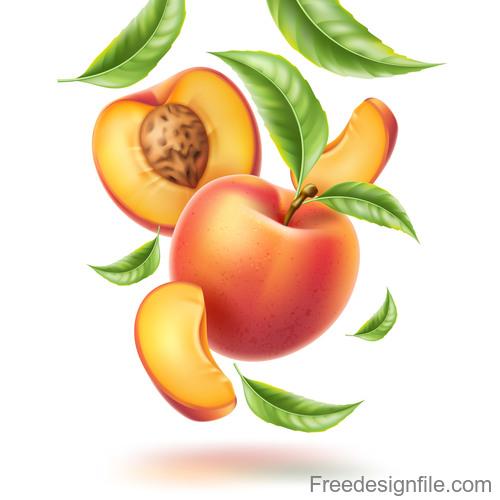 Fresh peach vector illustration material