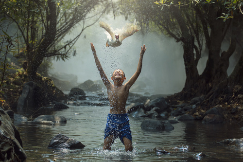 Happy little boy and duck flying up Stock Photo