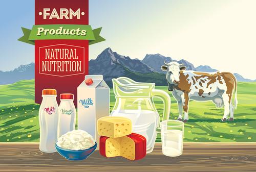 Natural farm milk food poster design vector 03