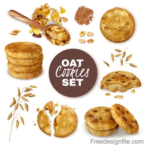 Realistic oat cookies vector