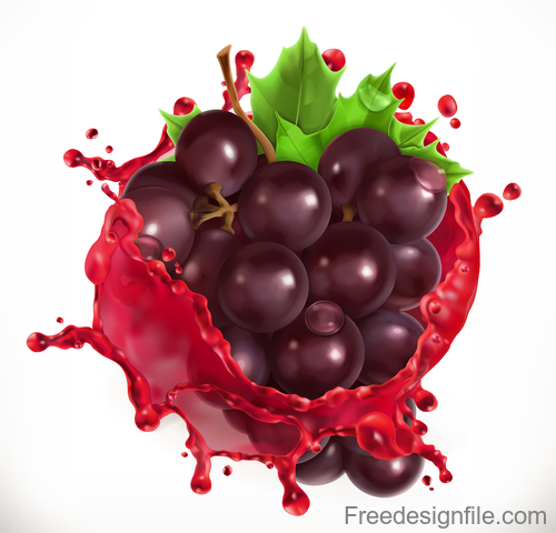 Red wine and grapes juice splash vector illustration
