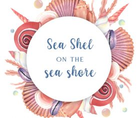 Sea shel with summer background vector 02