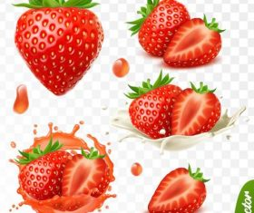 Strawberry illustration vector design