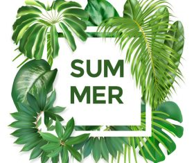 Summer background with tropical leaves vectors