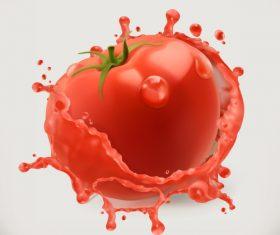 Tomato juice splash vector illustration