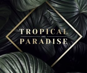 Tropical paradise with leaves vectors