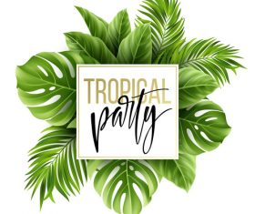 Tropical party background with leaves vectors