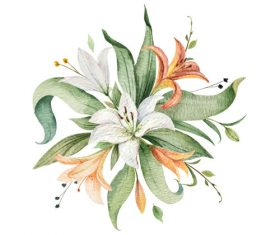 Watercolor lilies flower vector illustration 01