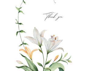 Watercolor lilies flower vector illustration 03