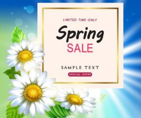 White flower with sale background vector