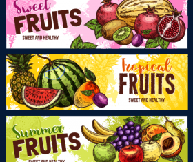 Summer Fruit Sale Discount Banner vectors
