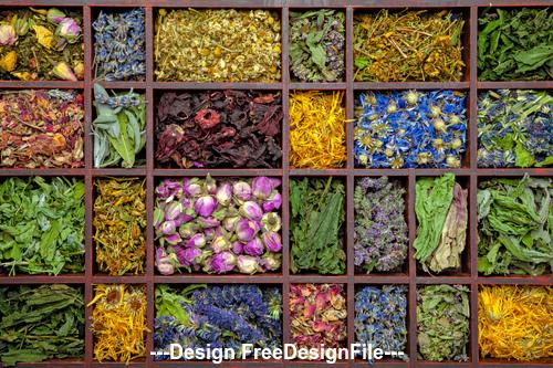 Different Flower Tea Stock Photo