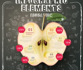Fruit Infographic Template Design vector