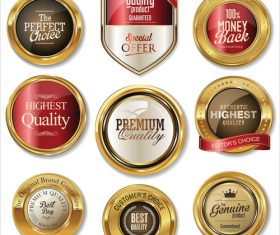 Golden retro vintage badges collection vector
