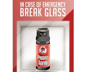 Pepper spray inside the box vector