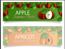 Apple apricot sale banner vectors