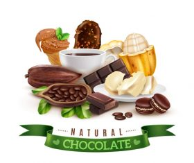 Realistic cocoa chocolate illustration vector