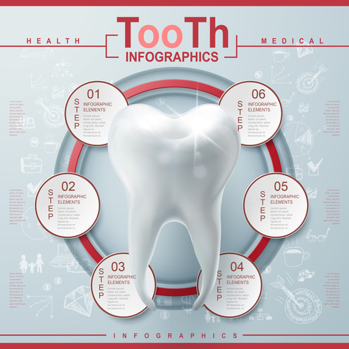 Teeth Infographic Template Design vector
