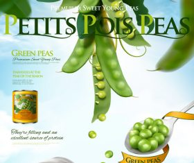 Canned young peas ads poster 3d vector illustration