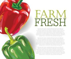Fresh Green Pepper Ad Template vector
