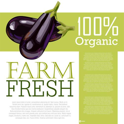 Fresh Organic Eggplant Ad Template vector