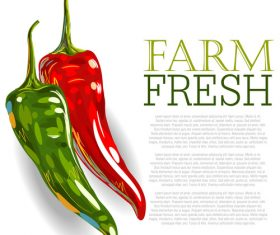 Fresh Red Pepper Ad Template vector