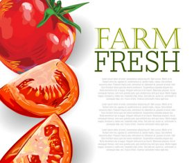 Fresh Tomatoes Ad Template vector