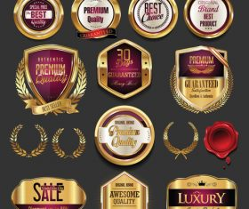 Golden badges and labels set vector