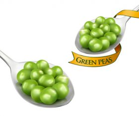 Green peas ad template vector
