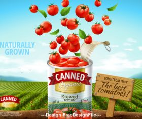 The best tomatoes canned advertising poster vector