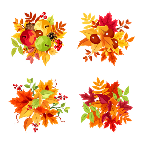 Autumn leaf and fruit illustration vector