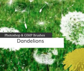 Dandelions and Seeds PS Brushes