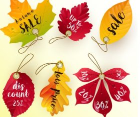 Leaf illustration sale tag vector