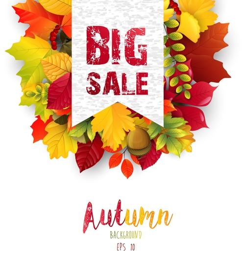 Season sale label vector