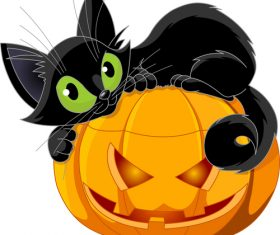 Black cat on pumpkin vector