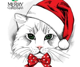 Cat wearing a christmas hat vector