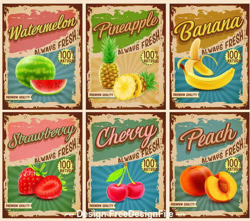 Fruit banner card vector