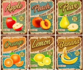 Fruits vintage banner vector