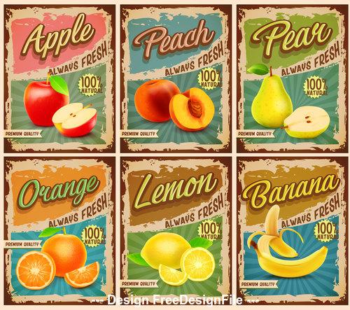Fruits vintage banner vector