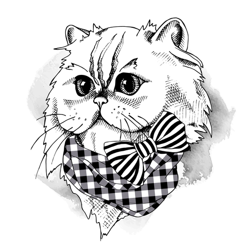 Himalayan cat bow scarf vector