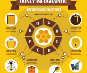 Honey infographic vector flat style