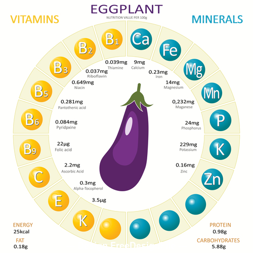 Infographics about nutrients in eggplant vector