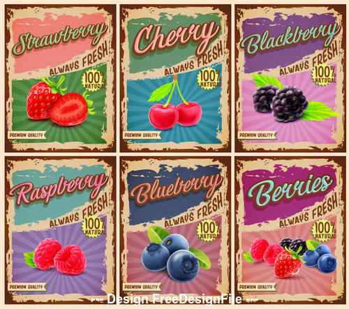 Retro fruit banner vector