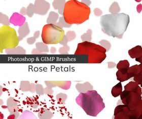 Rose Petal PS Brushes